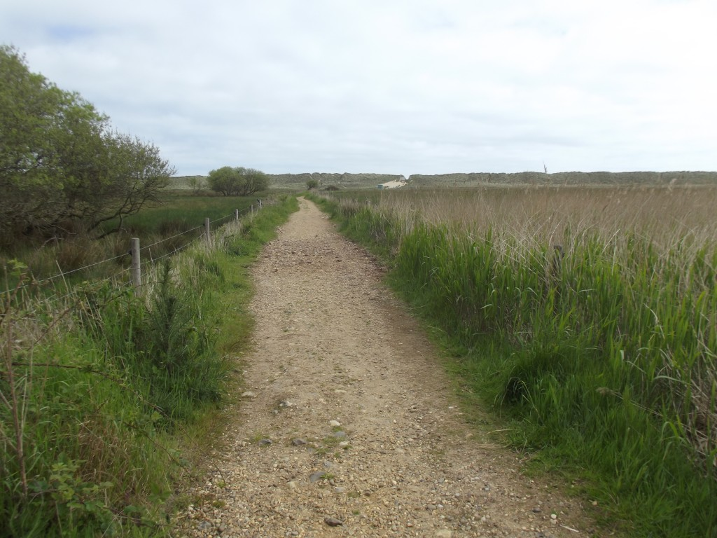Walk towards the beach at Horsey