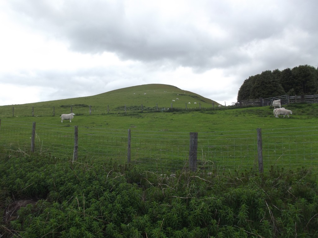 The Whimble, one of the Radnor Forest's most recognisable hills is sadly all fenced off and inaccessible.